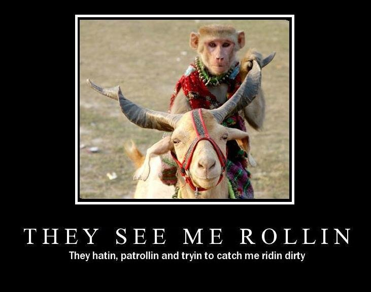 ha - they see me rolling