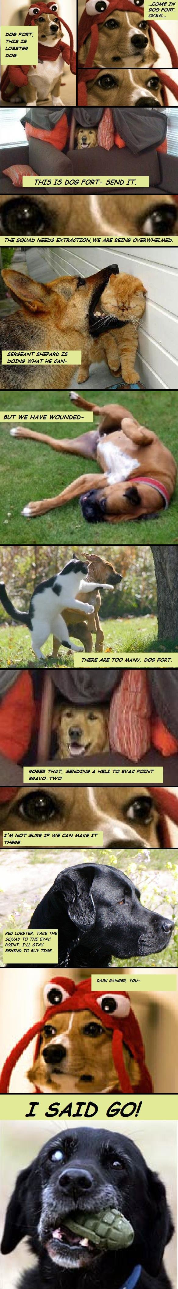 heroes - dog fort