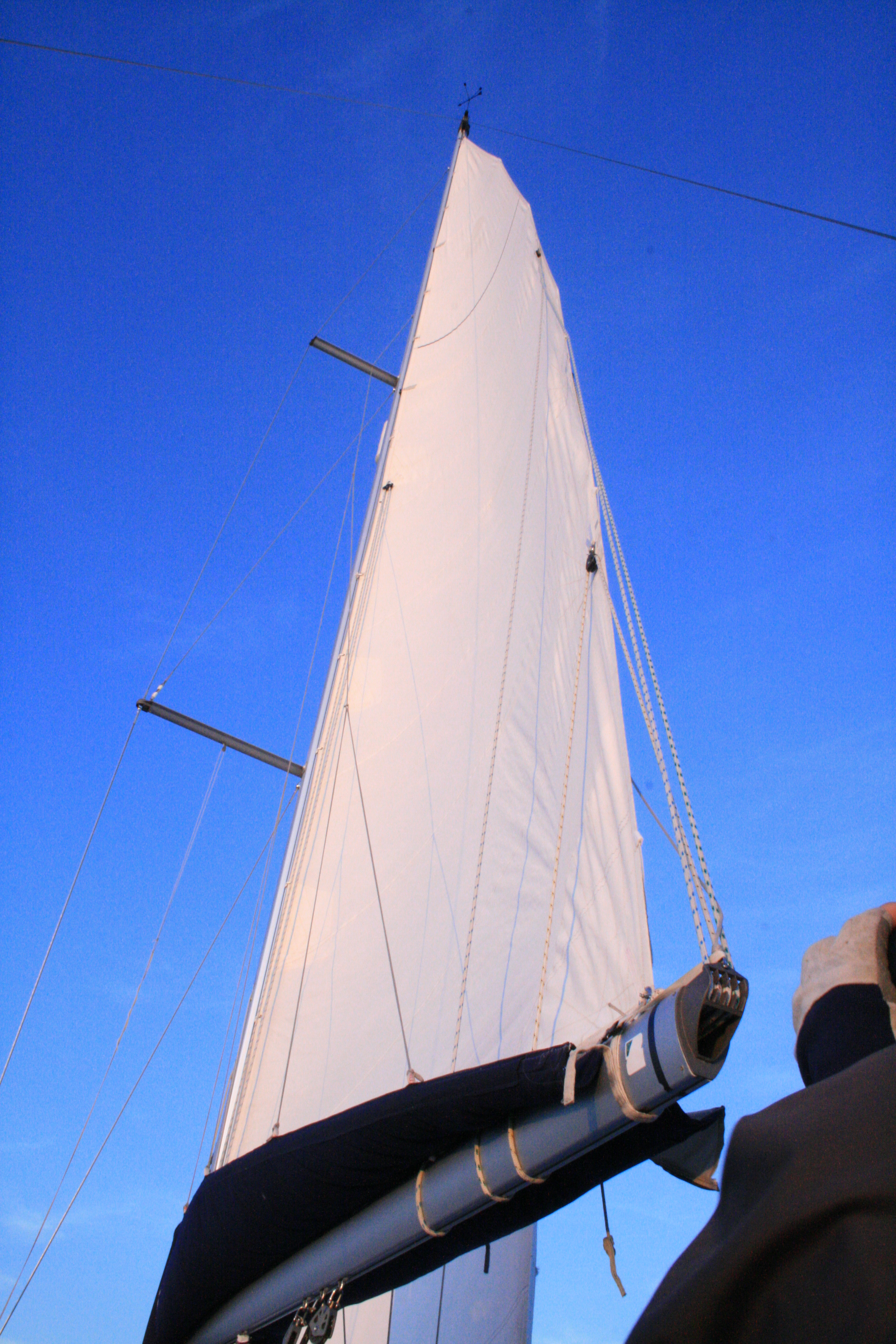 Picture Of Sail Channel Islands Day Tours: Channel Islands Sailing Photographs