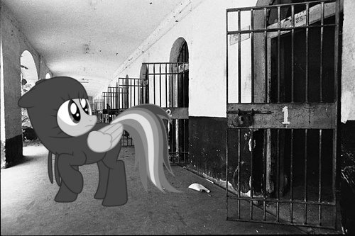 jailbreak - ponies in real life