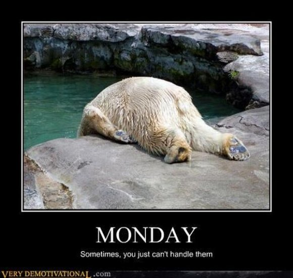 mondays - i did it for the lolz