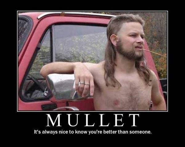 mulletloser - motivational pictures