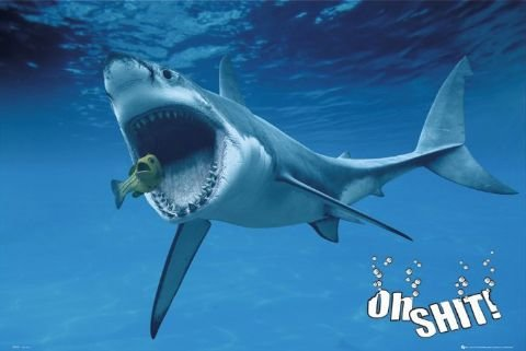 oh shark l - epic coolness