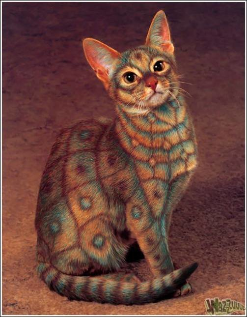 picture2 - cat painting