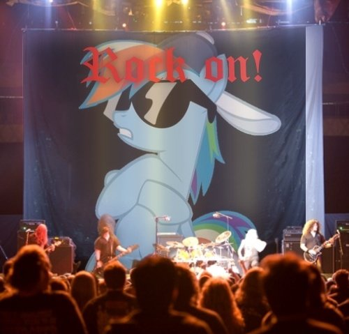 rock on - ponies in real life