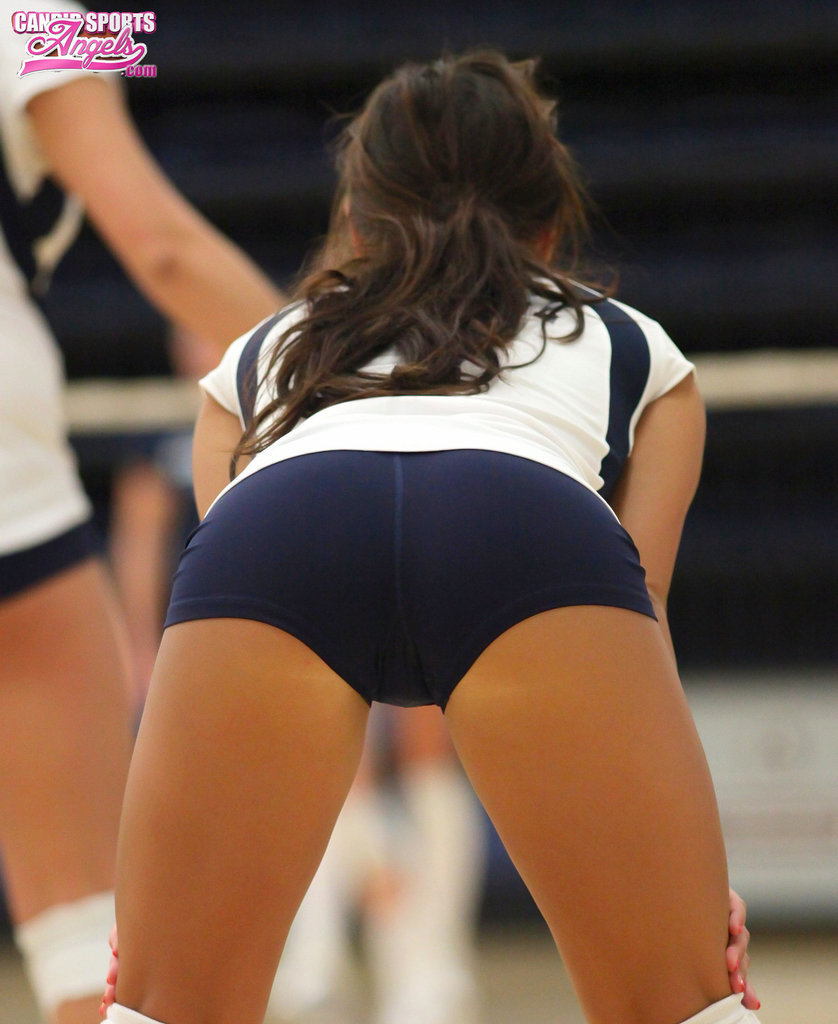 set - hot volleyball girls