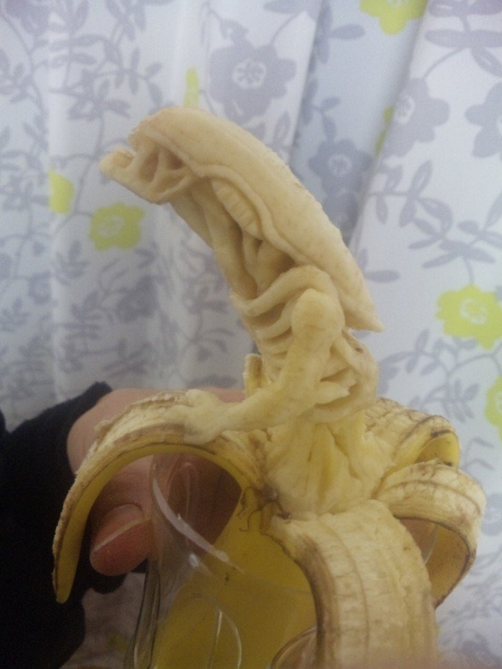 this is bananas 4 - this is bananas