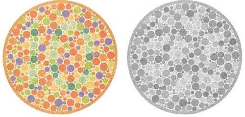 untitled 1 - color blindness test - ultimate edition