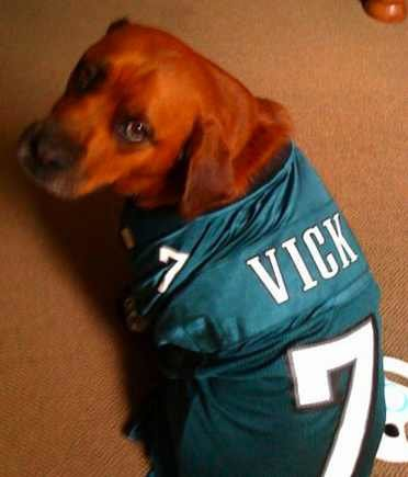 vickdog - if you laugh at this you are going to hell