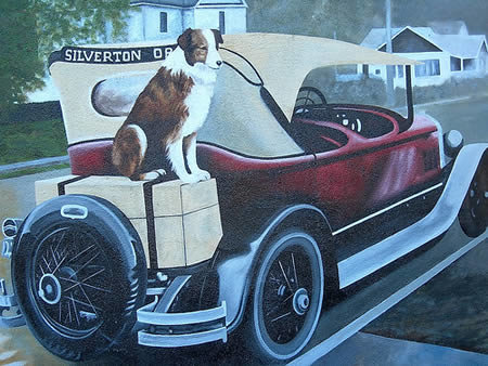 a378 travelerdog - most fascinating dogs