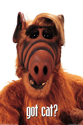 alf - omg the aliens are here