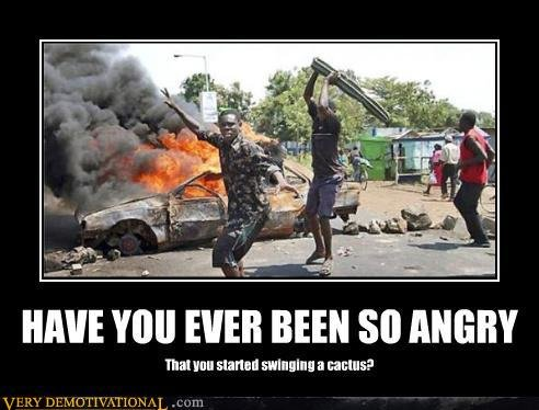 angrycactus - have you ever been so angry that...