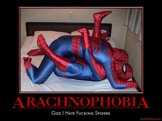 arachnophobia couldnt help myself hate spiders though demotivational poster