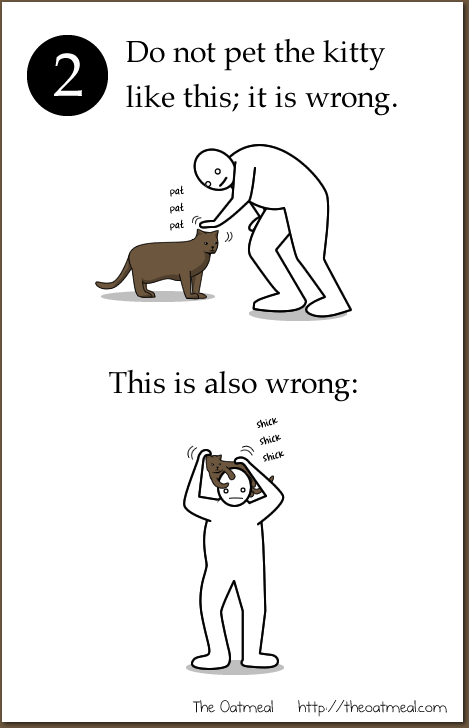 b - how to pet a kitty :d