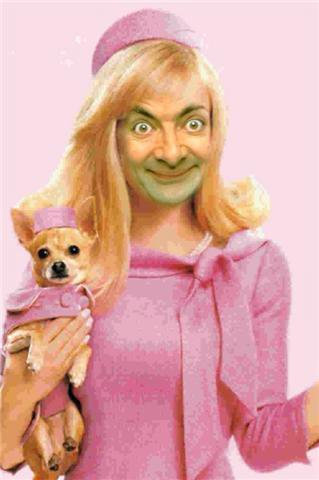 bean legally blonde