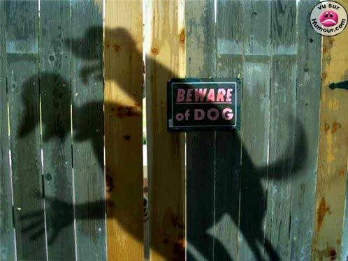 beware00 - funny ass pictures