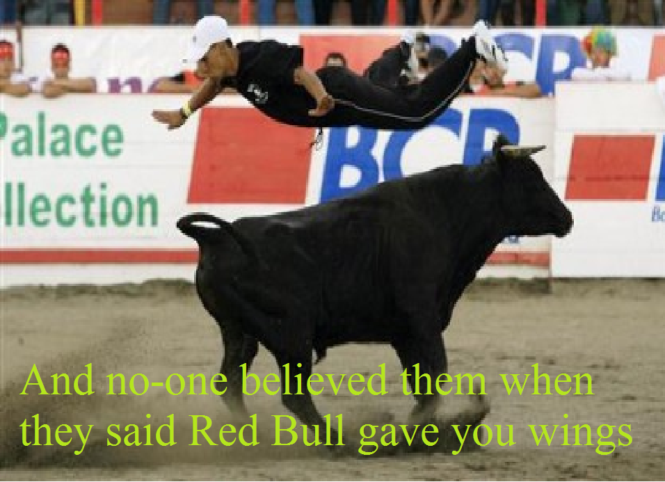 bull - redbull does give you wings!