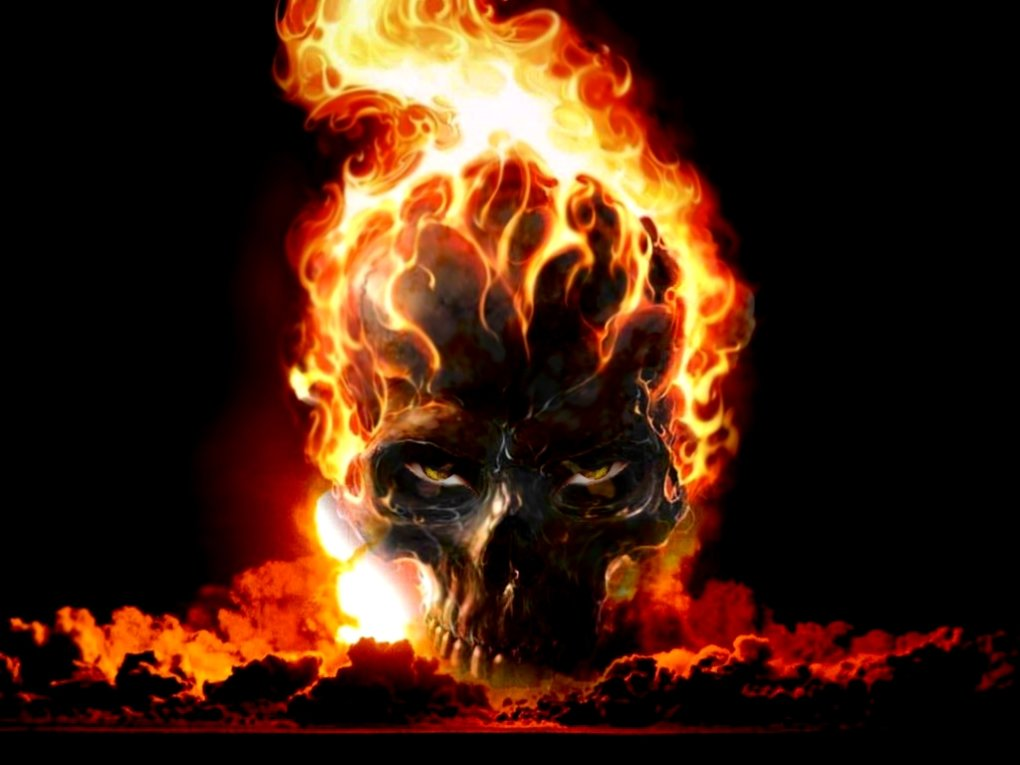 burning skull wallpaper