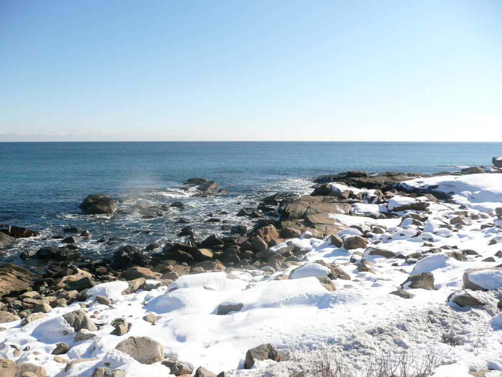 capeannmass - nature at its brightest