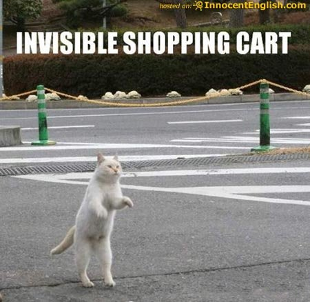 cat pushing invisible shoppingcart