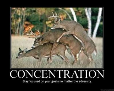 concentration - motivational posters