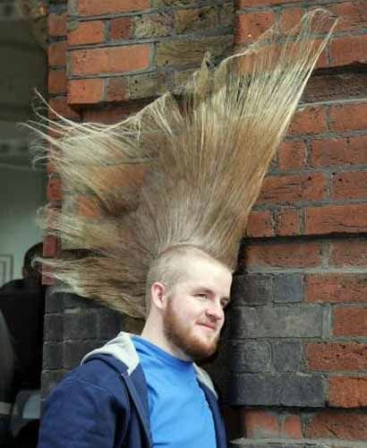 crazyhair - funny and ramdom pics