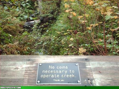 creek - funny pics from around the web.