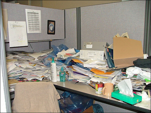 cubicles 10 - the cubical