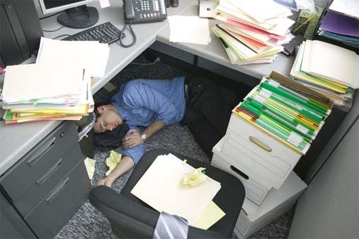 cubicles 15 - the cubical