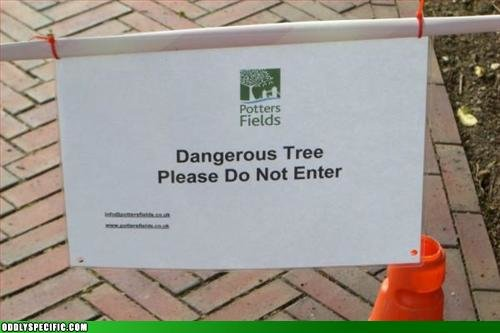 dangertree - funny pics from around the web.