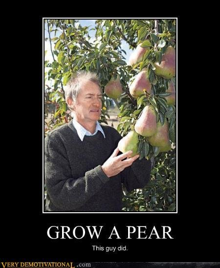 demotivational posters grow pear