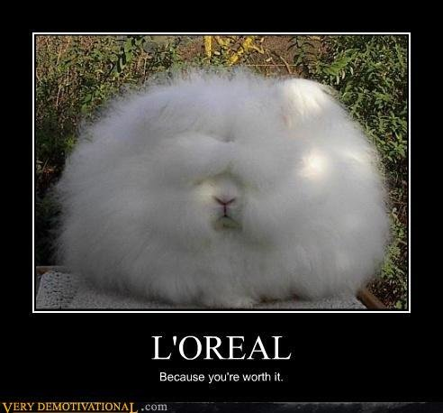 demotivational posters loreal