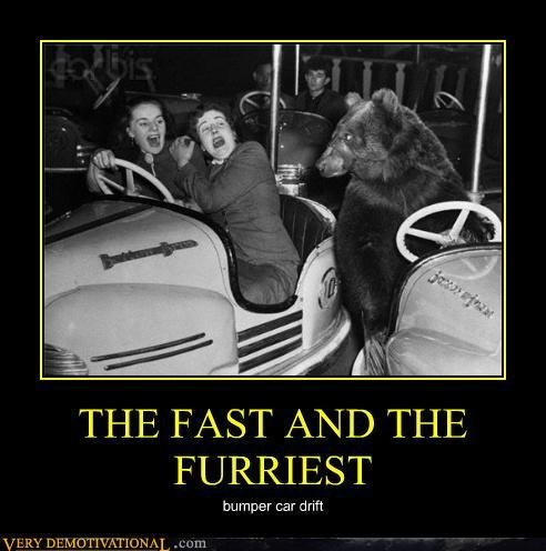 demotivational posters fast furriest