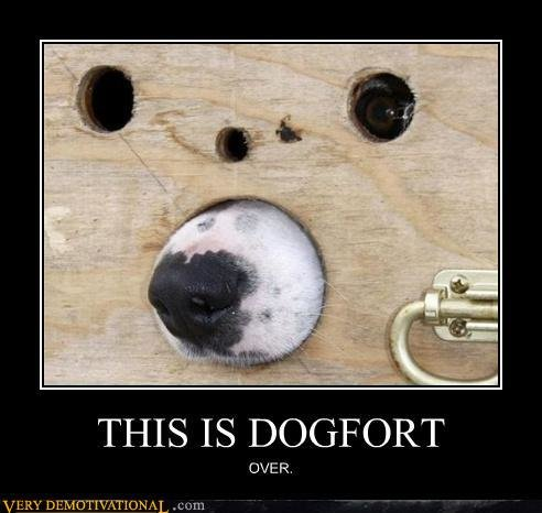 demotivational posters dogfort