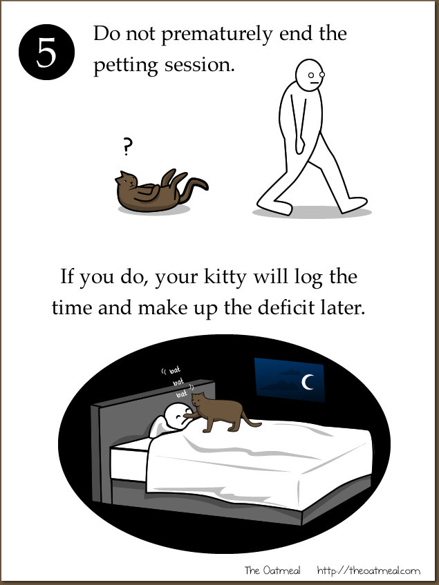 e - how to pet a kitty :d