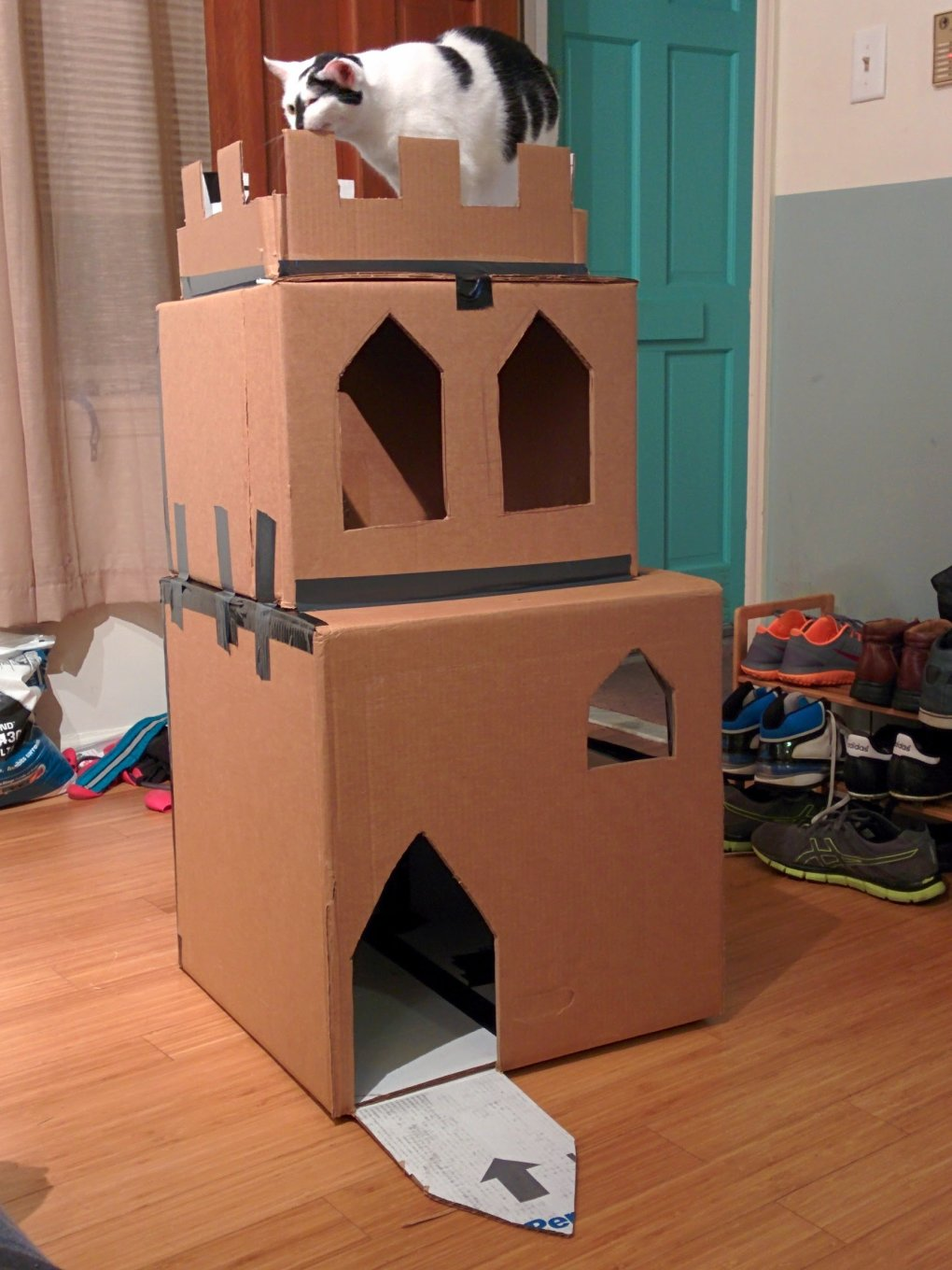 e24xqa9 - why don't we build cardboard castle to our cats? this is how to do it.