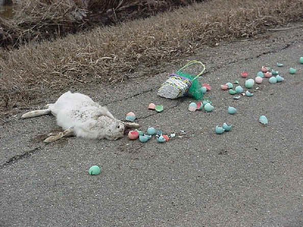 easter cancelled sorry kids