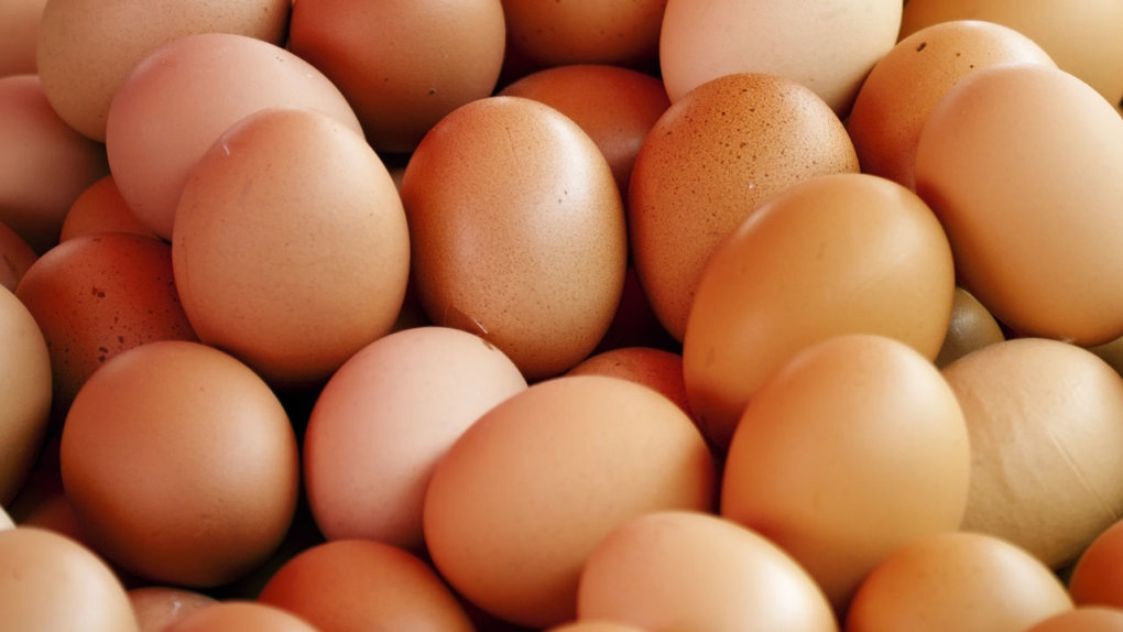 eggs - 15 expired foods that are dangerous and most probably in your fridge