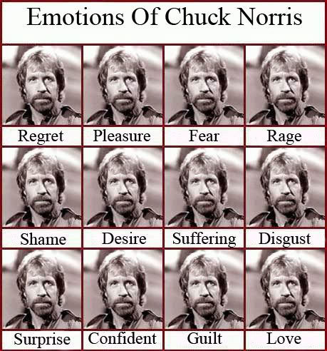 emotions chuck norris