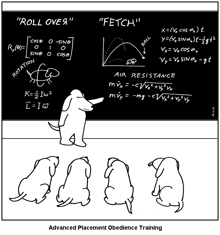every time your dog fetches ball doing calculus