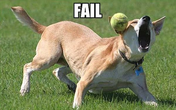fail - funny ass pics