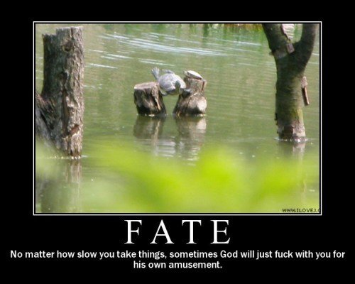 fate - demotivational posters 2010