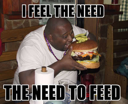 feed me - funny and ramdom pics