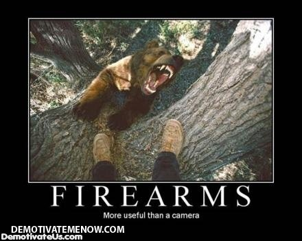 firearms bear camera demotivational posters