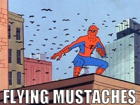 flying moustaches