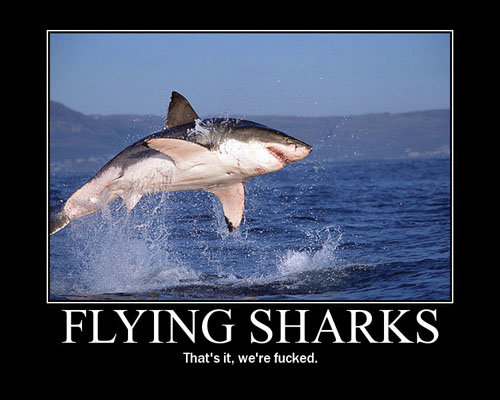 flying sharks