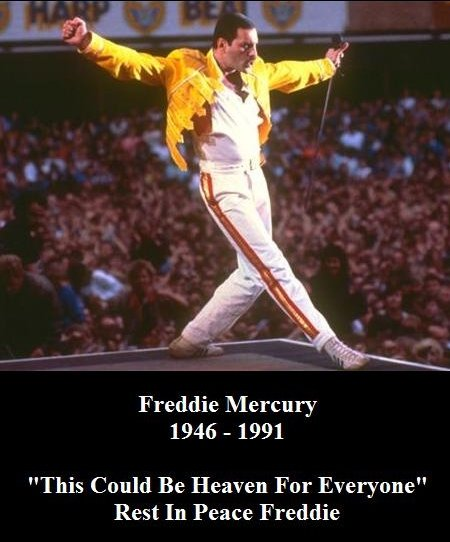 freddie - happy birthday freddy mercury!