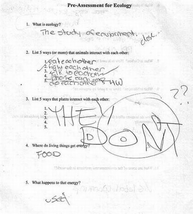 funny answers test questions high