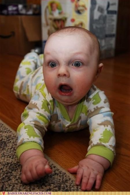 funny babies faces