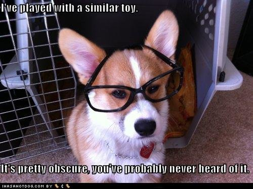 funny dog pictures ive played similar toy pretty obscure youve probably